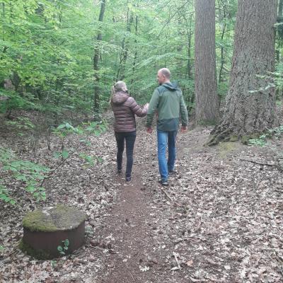 coaching natuur, wandelcoach
