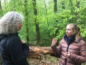 coaching in de natuur